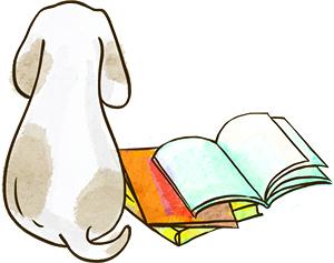 Как вызвать у ребенка интерес к чтению?
